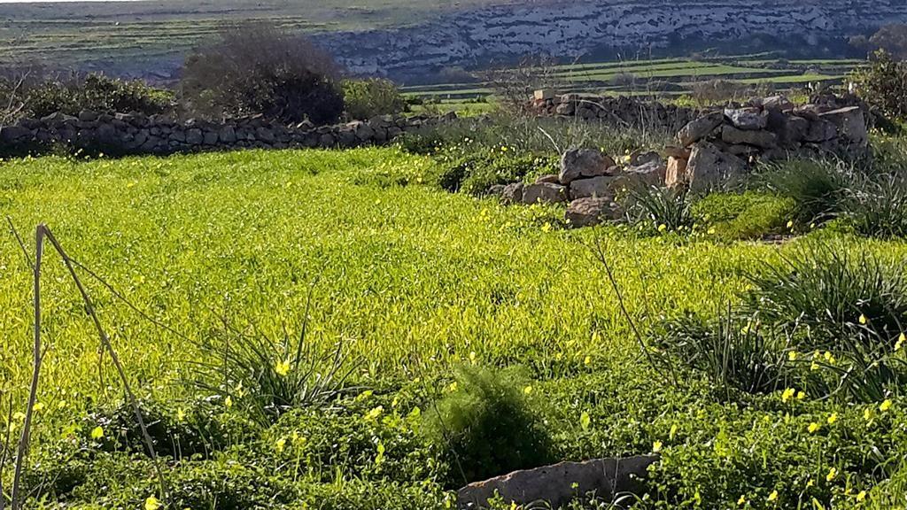 Gozo walks from Mediterranea Seaviews Gozo holiday home