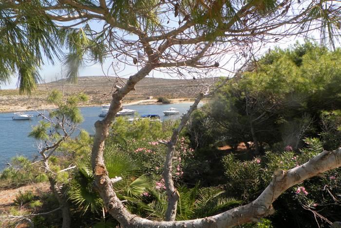 Best walks in Gozo