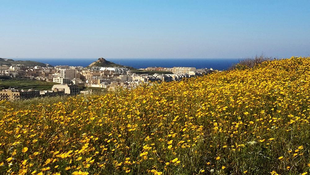 Gozo country walks